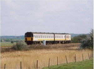 marsh link train